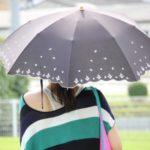 日傘、日差し